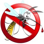 zanzare-1024x1024